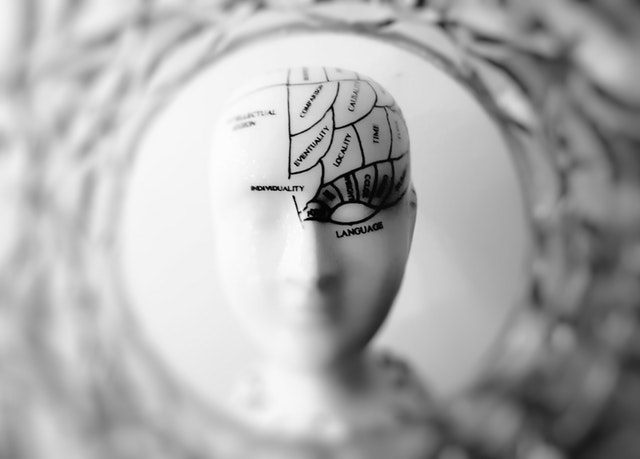 Not everything's caused by obesity — like brain and memory function